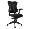 Black mesh spine chair