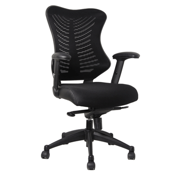 Mesh Executive Office Chair, High Back, With Arms, Adjustable, Black (new)