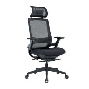 Ergonomic Mesh Office Chair With Armrests, Optional Headrest